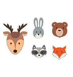 animal heads in cartoon style woodland vector image