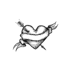 engraving heart and arrow vector image