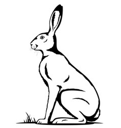 one hare black and white vector image