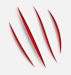 Animal claw scratches vector
