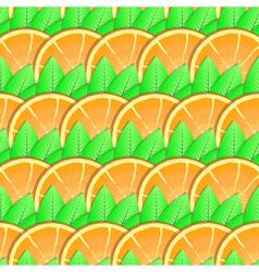 citrus-fruit background vector image