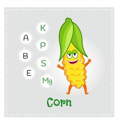 Corn vegetable vitamins and minerals vector