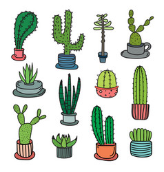 Hand drawn doodle cactus set vector