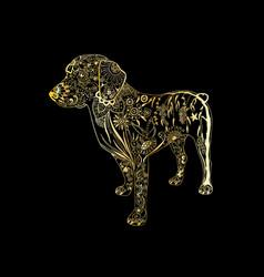 Hand drawn golden dog on black background vector