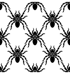 Spider web pattern vector image