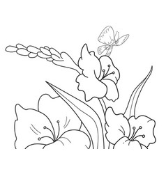 childrens coloring cartoon glade with flowers in vector image vector image