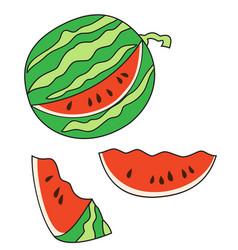 ripe cut watermelon vector image vector image