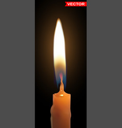 realistic burning wax candle with flame vector image