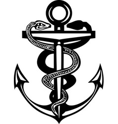 two snake anchor vector image