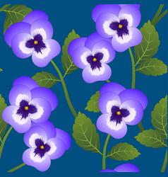 Violet viola garden pansy flower on indigo blue vector