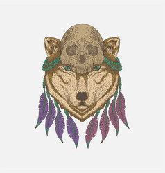 wolf head skull vector image