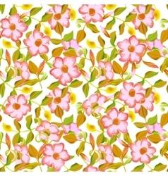 spring floral garden seamless pattern vector image