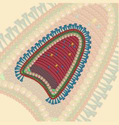 rabies virus background eps 10 vector image vector image