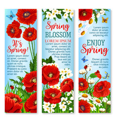 Spring flower field for greeting banner template vector