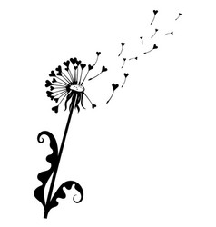 Dandelion with hearts black and white dandelion vector
