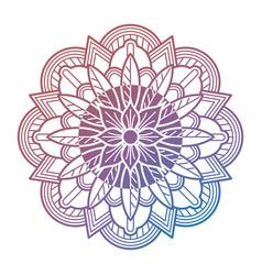 meditation oriental mandala flower vector image