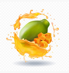 papaya juice splash realistic fruit icon vector image