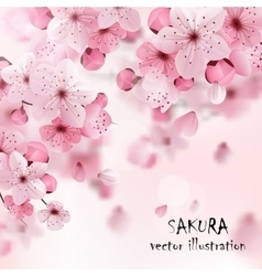Pink Cherry Sakura Print vector