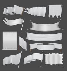 Realistik flag template blank isolated set vector