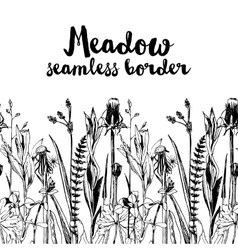 seamless herbal border vector image