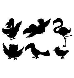 Different silhouettes of birds vector image
