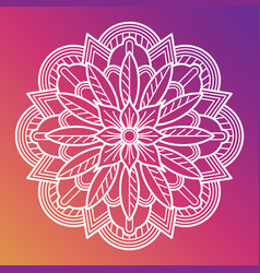 white flower mandala oriental asian arabian vector image vector image