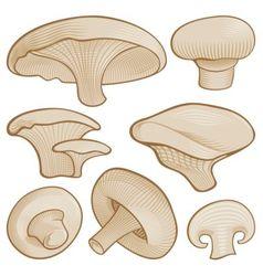 woodcut mushroom icons vector image vector image