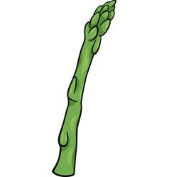 Asparagus vegetable cartoon vector