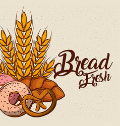 bread fresh bakey tasty products donut pretzel vector image