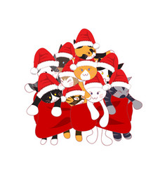 Cats with santa hat bouquet present vector