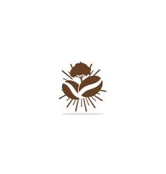 coffee bean tree logo vector image