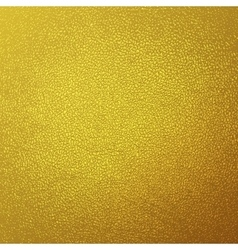 Gold glitter grunge texture background vector