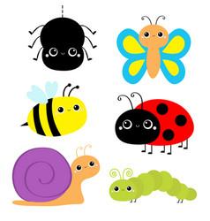 insect set ladybug ladybird green caterpillar vector image