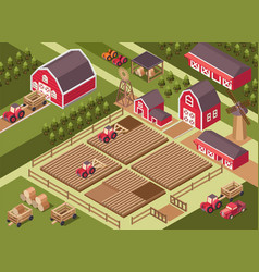 Isometric a farm vector
