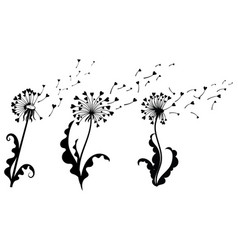 set dandelions with hearts collection of vector image