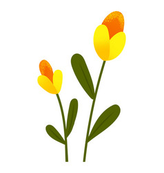 yellow tulips spring garden flowers isolated on vector image