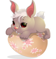 rabbit on the egg vector image