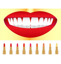 Set of lipstick vector image