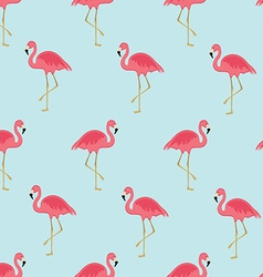 Seamless pattern flamingo vector image vector image
