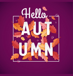 autumn background template with beautiful leaves vector image