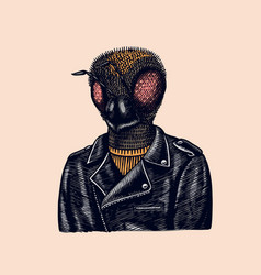 Bee biker fly in a leather jacket fashion insect vector