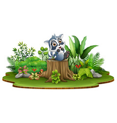 cartoon happy raccoon sitting on tree stump with g vector image