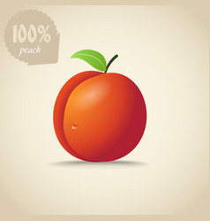 Cute orange peach vector