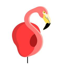 portrait a flamingo vector image