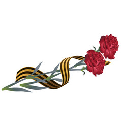 red carnation flower and st georges ribbon vector image