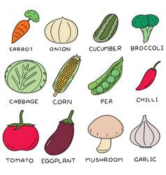 set of vegetable vector image