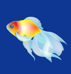 golden fish on the dark blue beckgound vector image