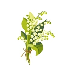 Lily Of The Valley Hand Drawn Realistic vector image vector image