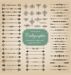 calligraphic dividers and decorative elements vector image