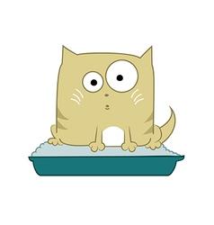 Cat in toilet vector image